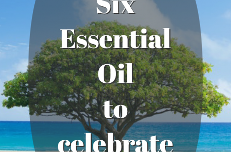 6 ESSENTIAL OILS AND BLENDS TO CELEBRATE THIS HOLIDAY SEASON